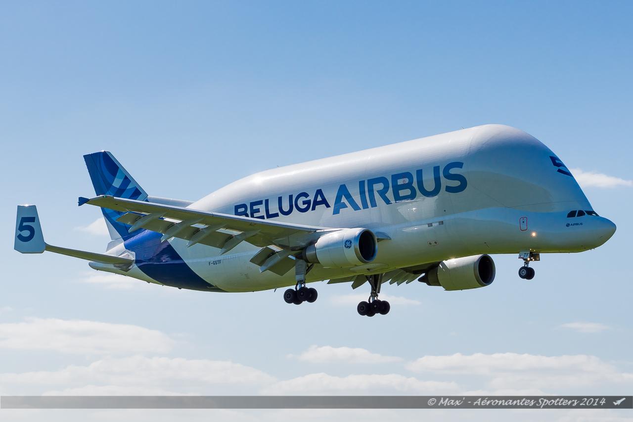 Spotting du 09/04/2014 : A321 Belgium Air Force ! 14040909041117438712136483
