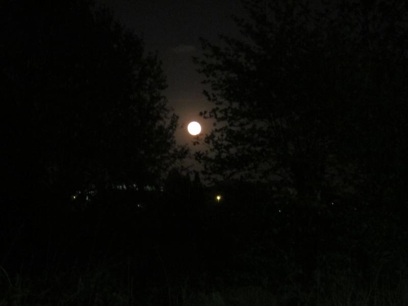 La pleine lune ce soir 15 avril ! 1404151002288300612152438
