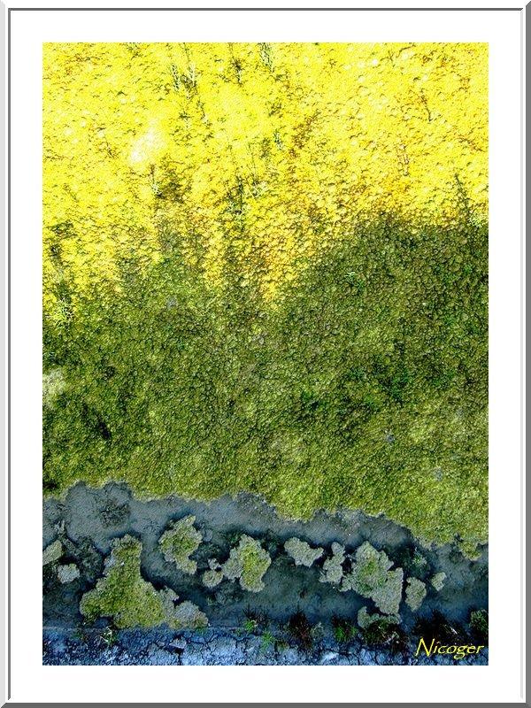 de nouvelles photos aériennes des marais salants de Guérande 14062111502615083512333532