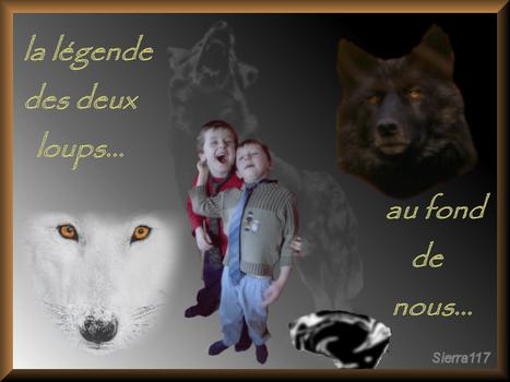 les 2 loups 1407040526289522712364731
