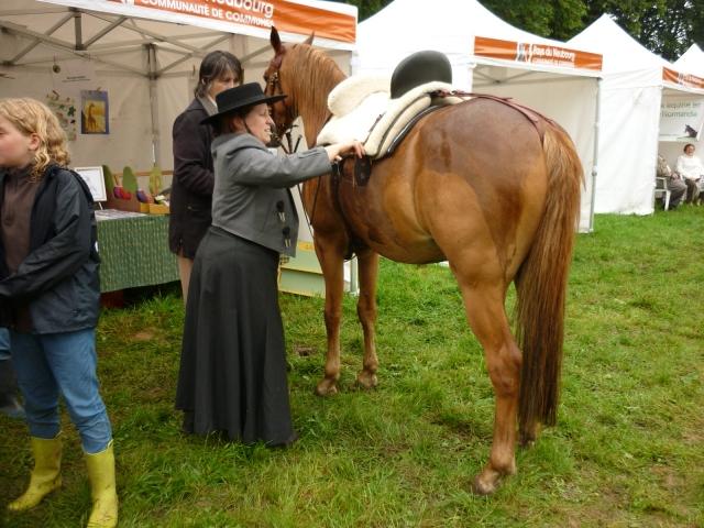 6 juillet 2014 - Fête du cheval à Canappeville (27) 14071005114110529712378658