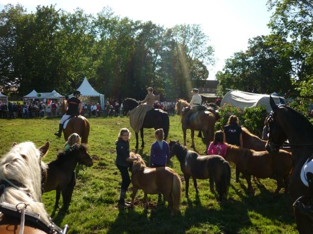 6 juillet 2014 - Fête du cheval à Canappeville (27) 14071006323910529712378992