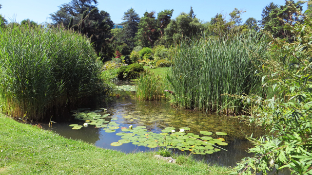 Jardin Botanique 1407170637231858212393693