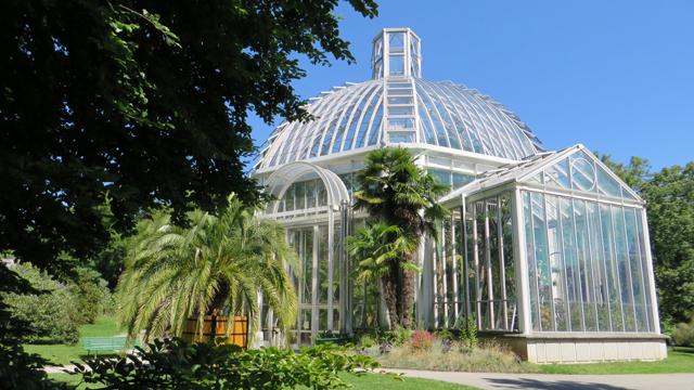 Jardin Botanique 1407170637331858212393695