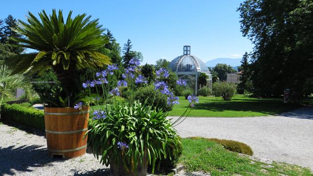 Jardin Botanique 1407170638001858212393702