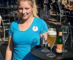 Een job in Belgisch Vlaanderen vinden 14072503051314196112409961