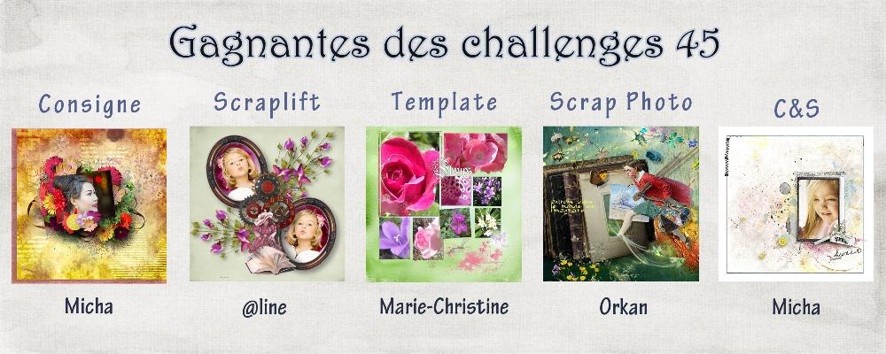 Résultats des challenges N°45 14080912042517782312440885