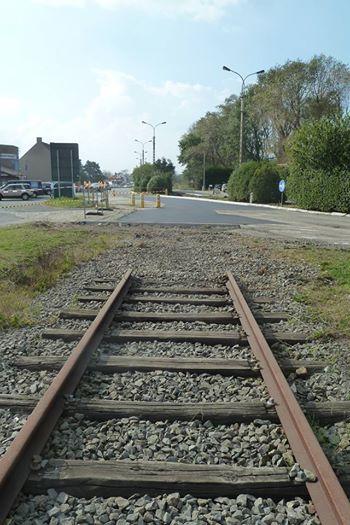 het 'onbegrip' tussen Vlamingen van België en van Frankrijk - Pagina 3 14101410455614196112613081