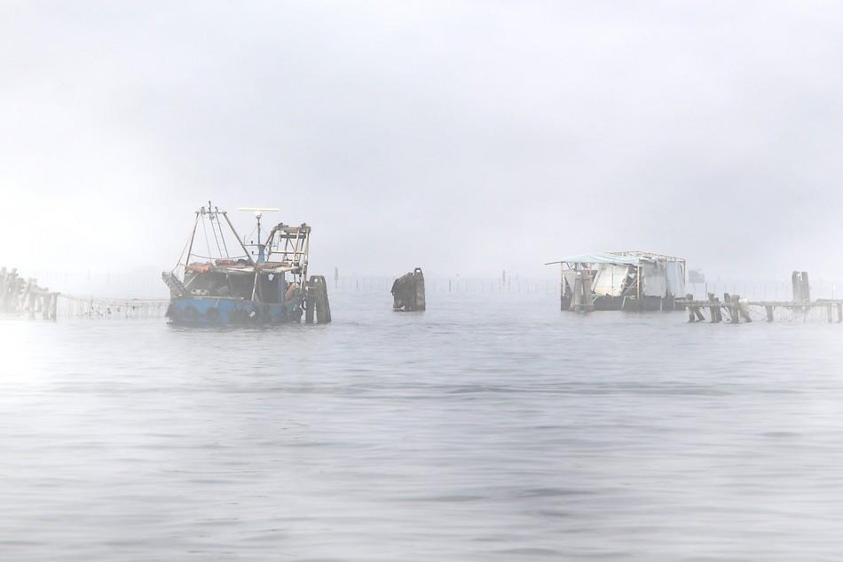 Pêche en eaux troubles ( Venise) 141029115245453212657263