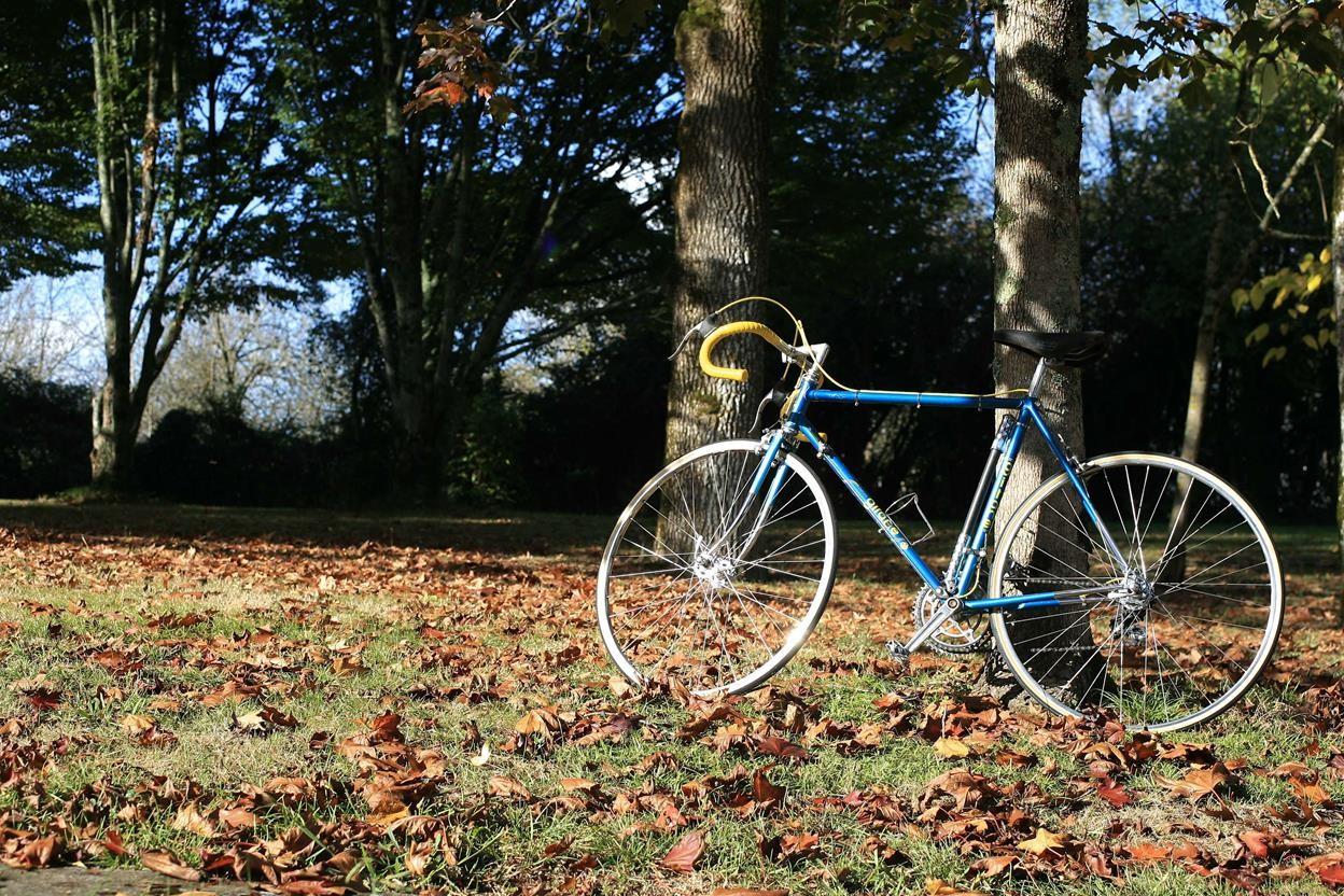 Encore un Gitane bleu... pour la route 14110502303617269712674925