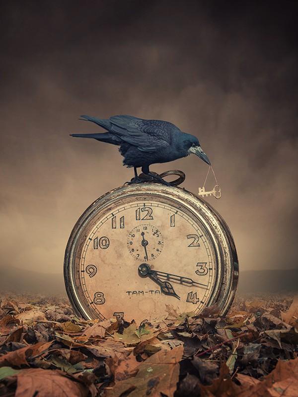 ______________________________________________Le temps qui passe. dans divers 14111808152218404912714370