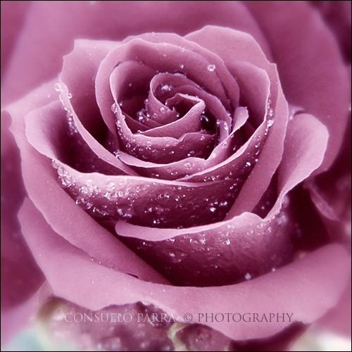 La beauté du ciel dans Méditation 14112411530317181812736834