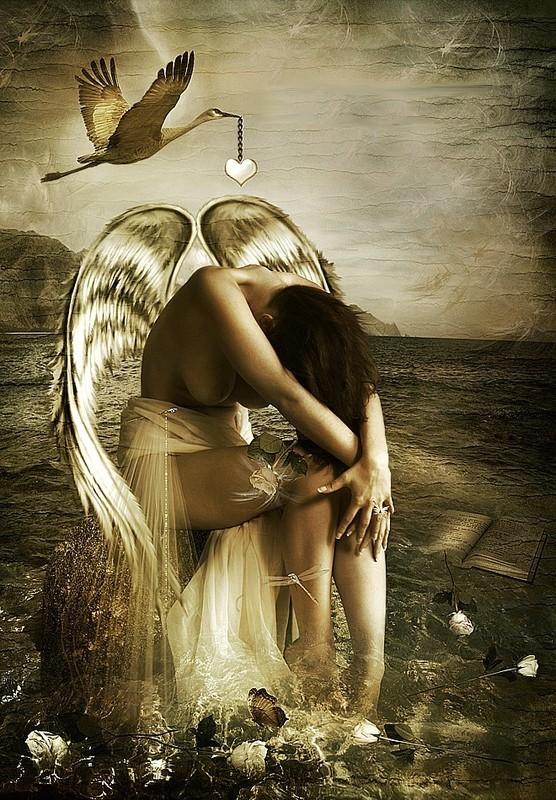 _____________________________________________________________ange amoureux dans anges 14112901100418404912749224