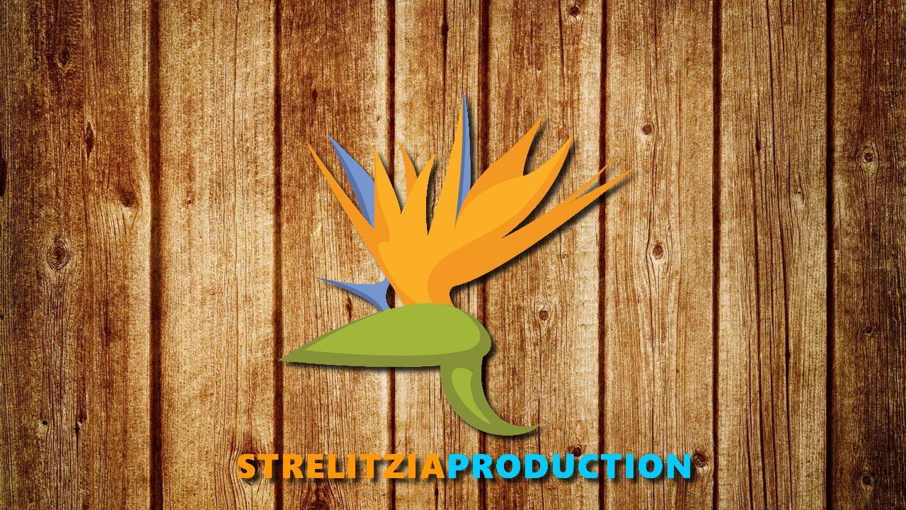 StrelitziaProduction et LouisNicod - LouisNicod - Counter Strike : GO