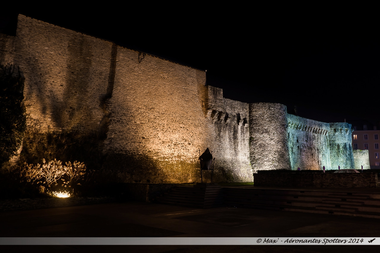 [Laval (53) - 30/12/2014] Illuminations de Noël autour de la Mayenne 15010202005918224512839676