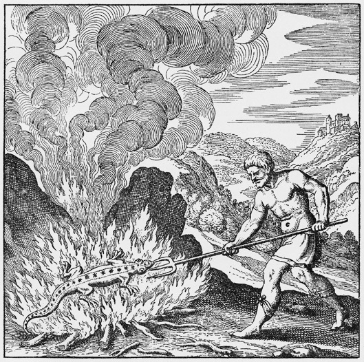 Traité de la Pierre Philosophale (Lambsprinck) 15021702134619075512975450