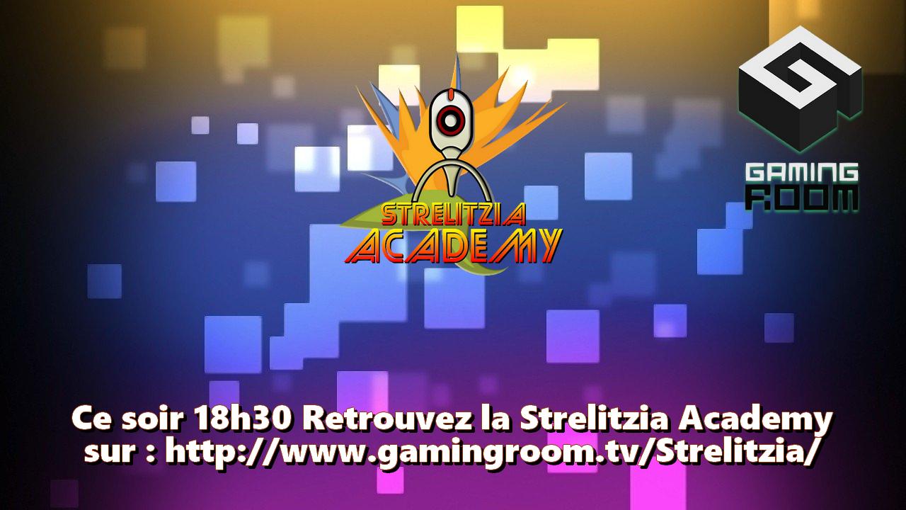 StrelitziaProduction - Strelitzia Academy #0 Présentation