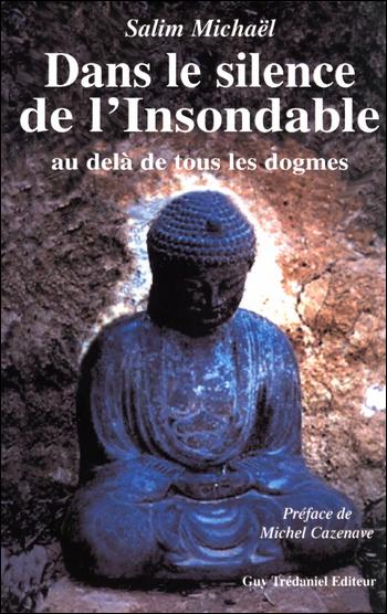 Dans le silence de l'Insondable - Salim Michaël