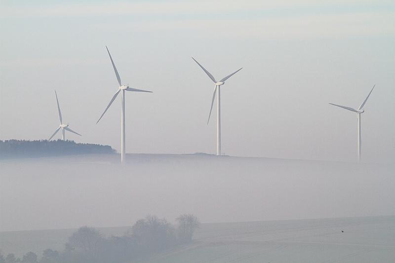 Des éoliennes et des grues 15030711054717878013042330