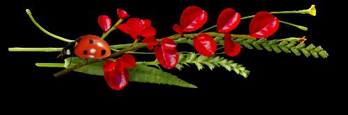 ---------belle image en 3D dans images en 3D 15042909075114696013216573