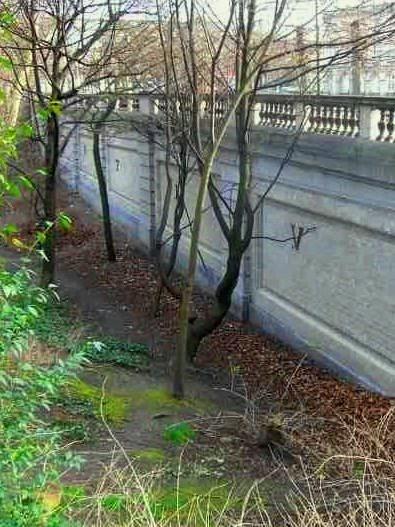 Bruxelles : Grand-Place, Parc Royal, Manneken'Pis... 15051610101919075513273021