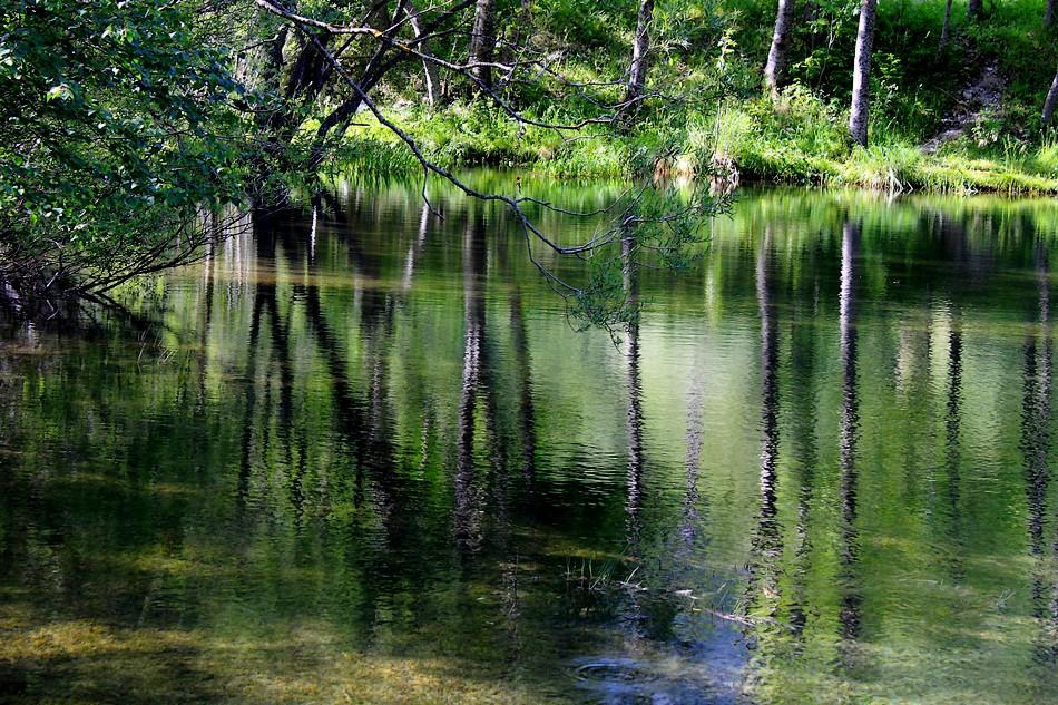 Au bord du lac 150702120829453213414677
