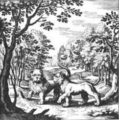 Lion / Deux lions 15070803563119075513428815