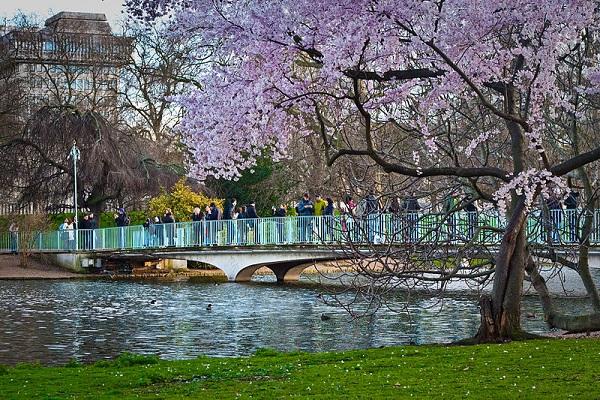 Bridge Of Spies StJames' Park
