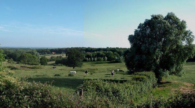 Natuurgebieden, mooie tuinen en landschappen in Frans-Vlaanderen 15080511521614196113488579