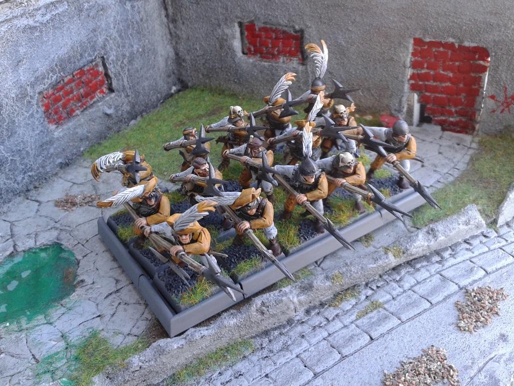 Armée du Sudenland 15091007373920165113572823