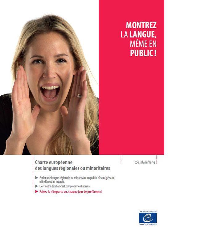 Officiële erkenning van de regionale talen in Frankrijk - Pagina 5 15102008314614196113676773