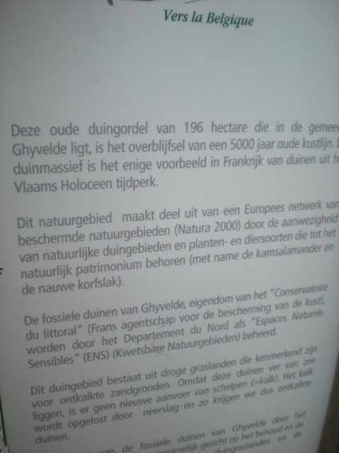 Het Nederlands en het Frans-Vlaams bij de ontwikkeling van het toerisme in Frans-Vlaanderen - Pagina 4 15110202330014196113716008
