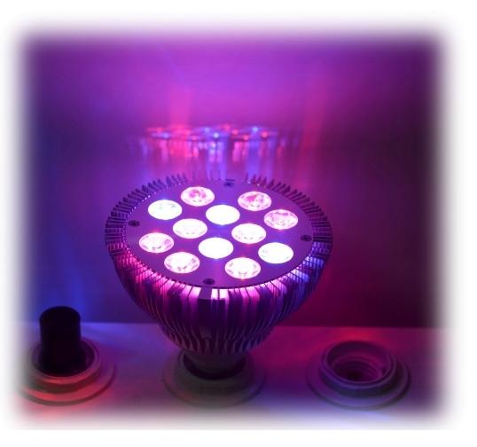 Bombilla fito led cultivo indoor interior hidropon a epistar 36 v ebay - Cultivo interior led ...