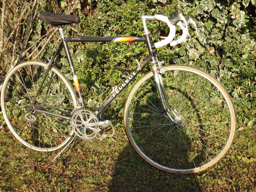 Peugeot PY 10M de 1985 1512210457237104513845321