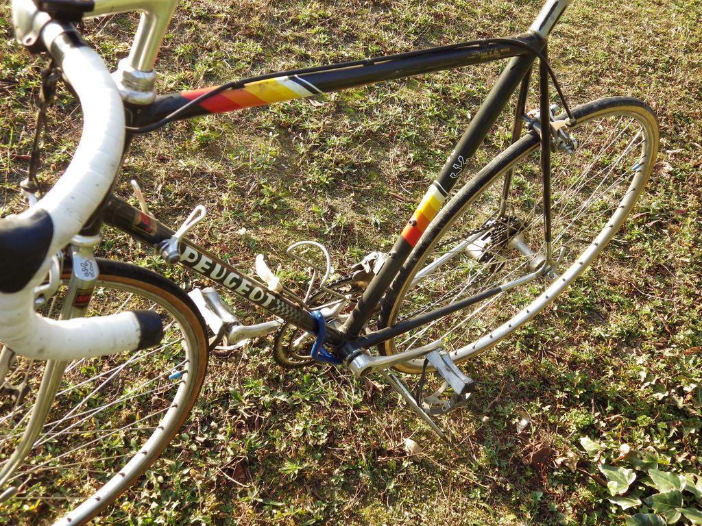 Peugeot PY 10M de 1985 1512210457257104513845330