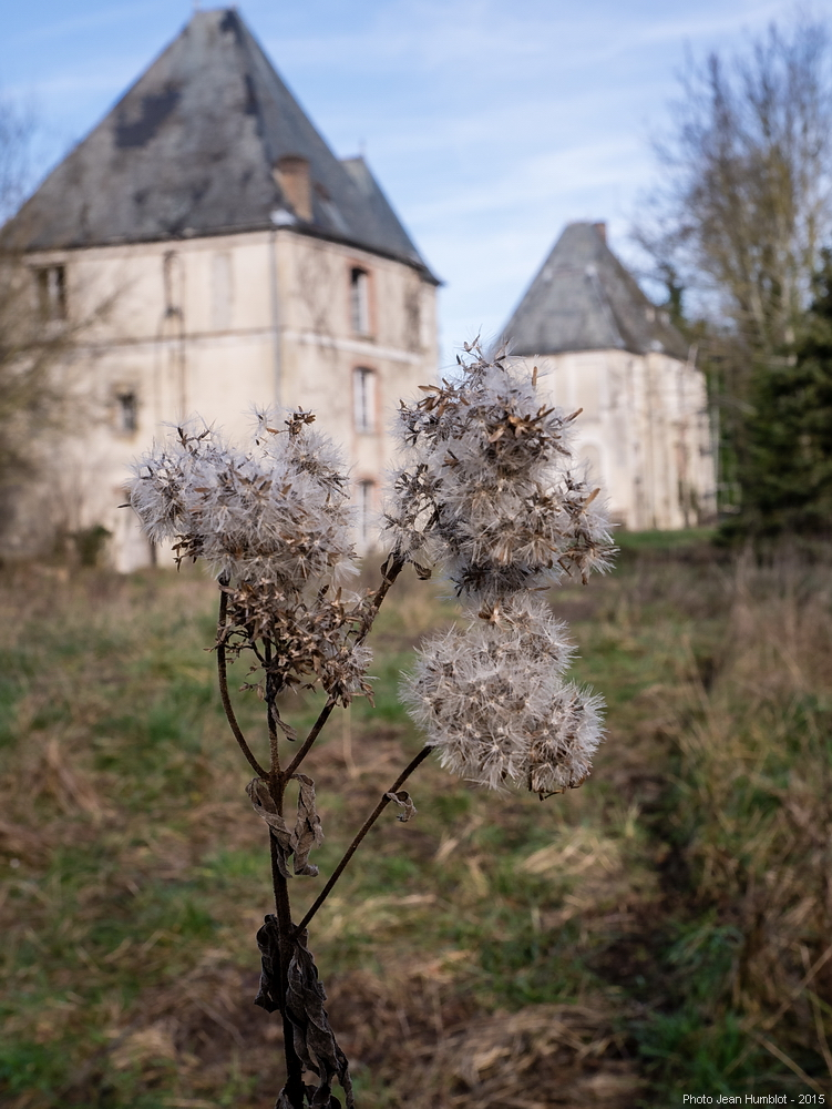 Zénitude sur Marne (5) Le château 16011706154019380413902950