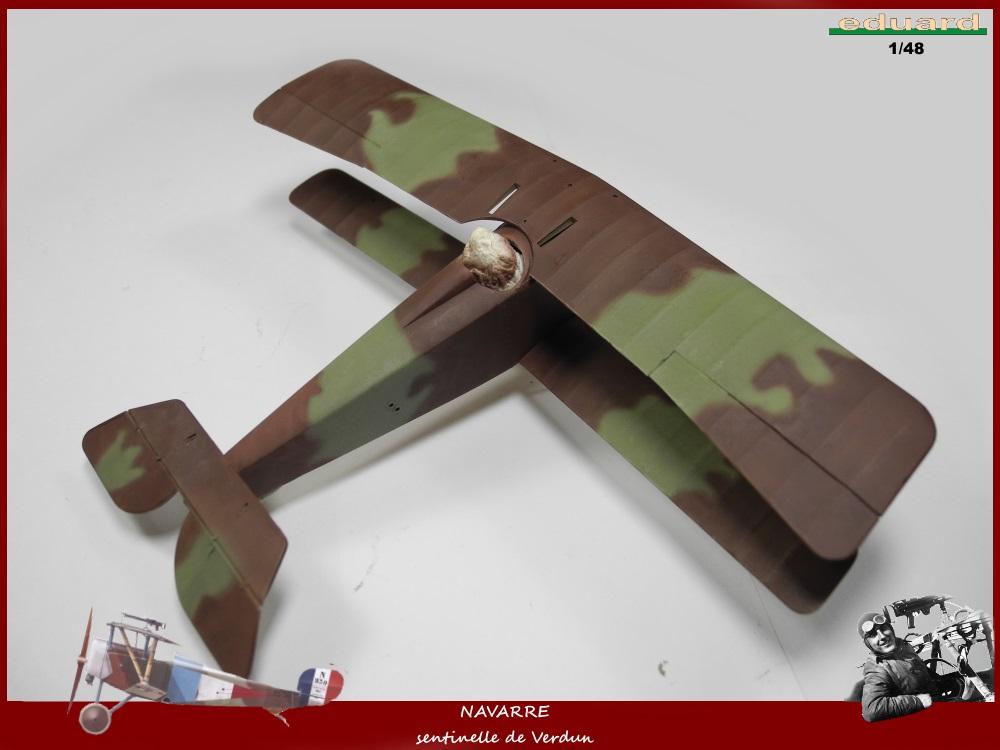 Camouflage français deux tons (3? 4?) 1916 16021810493018634313986200