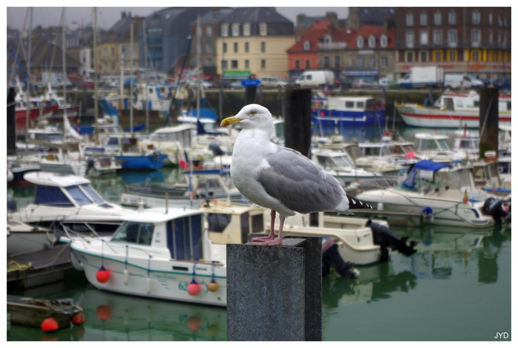 Dieppe : sortie de port et batillage 16022112204921023613992047