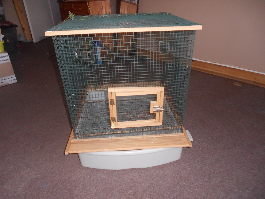 A donner 3 cages (50/14) Villedieu-Les-Poêles 16042409005920071514177026