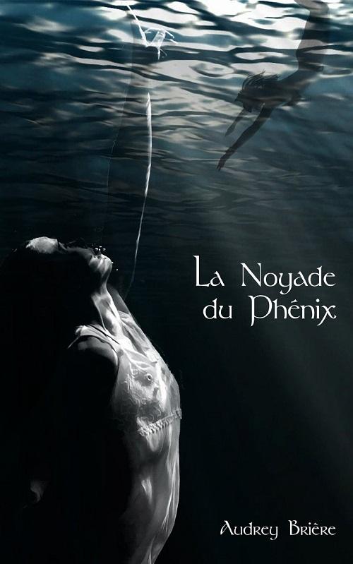 La Noyade du Phénix - Audrey Brière