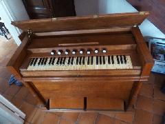 harmonium - P1090486