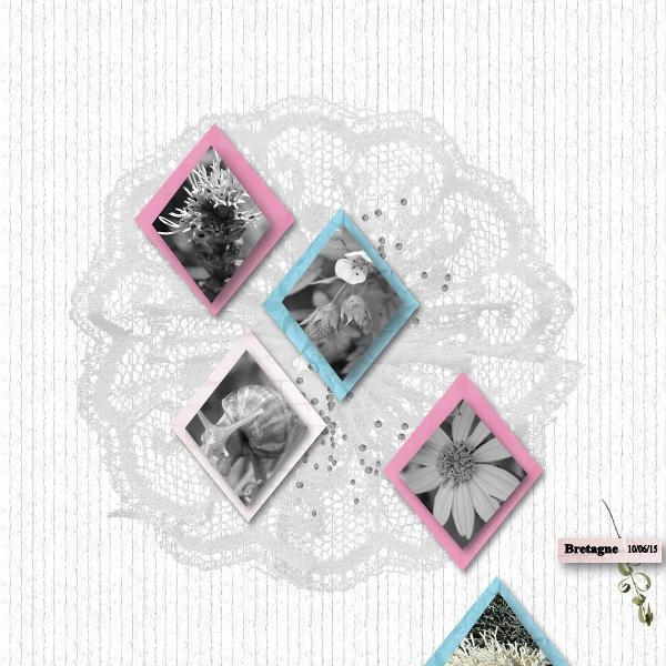 Chal.CS (éléments, papiers Vanessa, LouiseL) 06.16