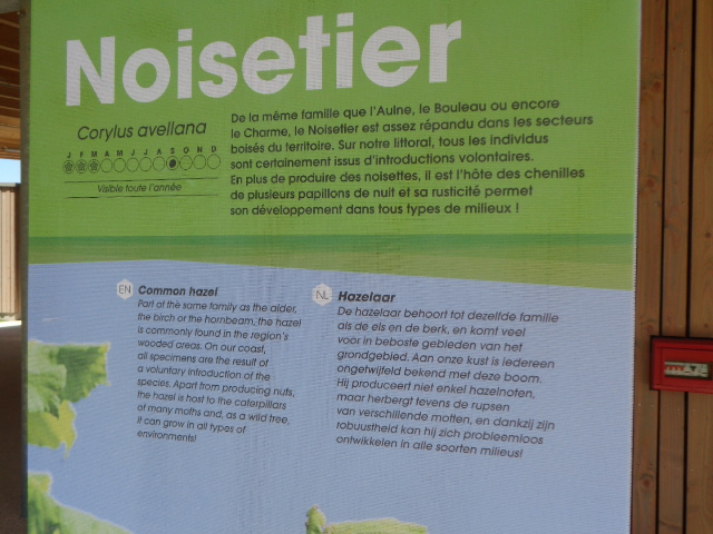 Het Nederlands en het Frans-Vlaams bij de ontwikkeling van het toerisme in Frans-Vlaanderen - Pagina 4 16070510251521508714356102