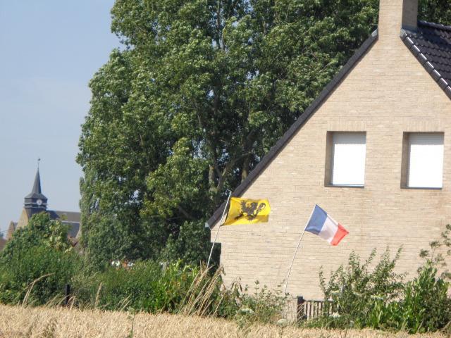 De Vlaamse vlag op onze huizen hangen - Pagina 2 16072106041421508714386903