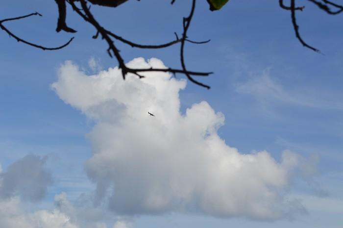 Bel arc-en-ciel dans Petites histoires 16082004022817181814441159