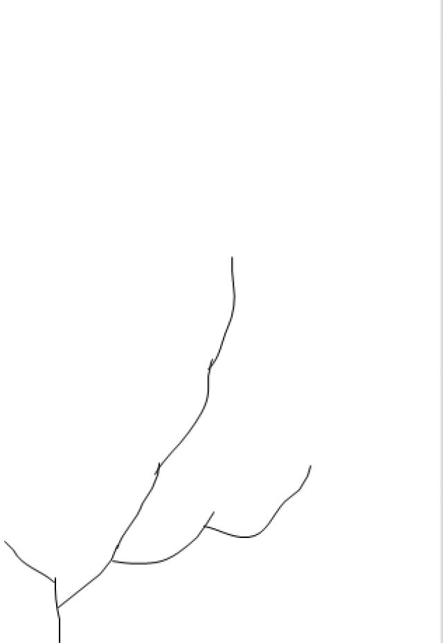 Cattleya-tête-en-bas - Page 2 16083111134720151714461811