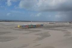 PAS DE CALAIS 2008 - Aout 2008 Berck sur mer