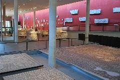 ARLES Musée 2011 - arlesoctobre2011 053