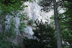 SAINT MAXIMUN- La Ste Beaume 2008 - 28aout2008 122