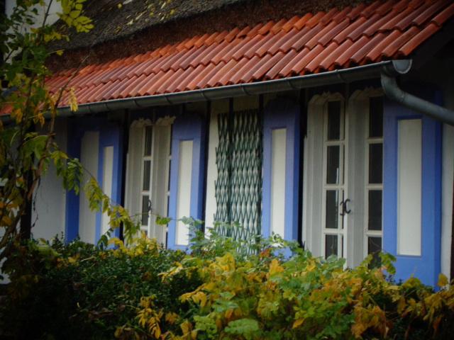 De strodaken van Frans-Vlaanderen - Pagina 3 16110806335321508714617618